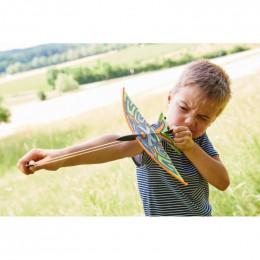 Terra Kids - Fronde-oiseau
