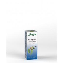 Huile essentielle Eucalyptus globulus - feuille Bio 50 ml